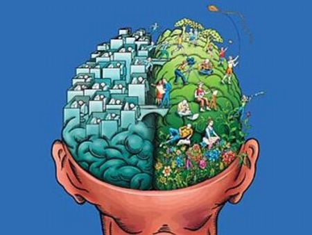 Test. How old is your brain