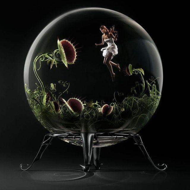 Creative photos from Dominique Piccinato (109 pics)