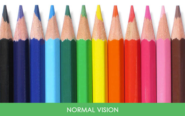 Take A Look At The World The Way Colorblind People See It