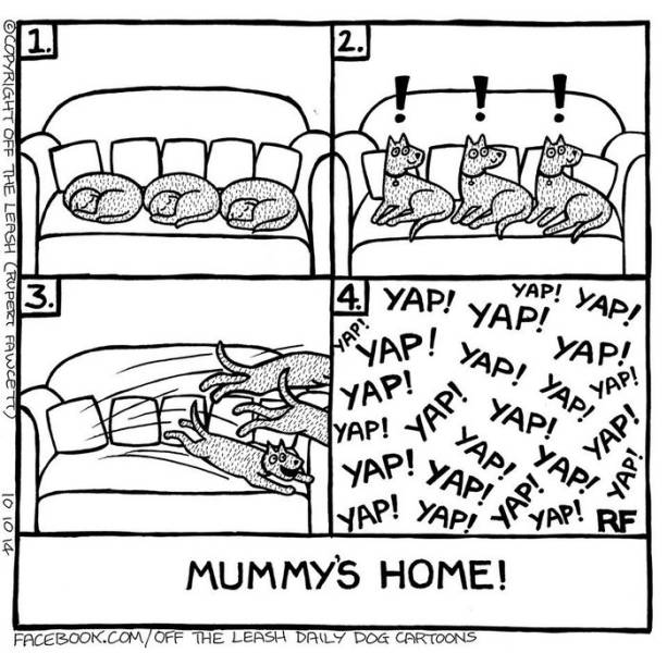 You Can Almost Feel The Truth Of Living With A Dog Through These Comics