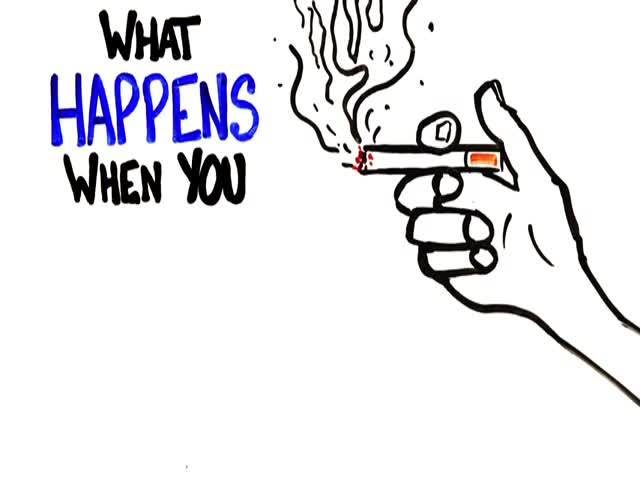The Actual Reasons Why You Should Stop Smoking Right Now