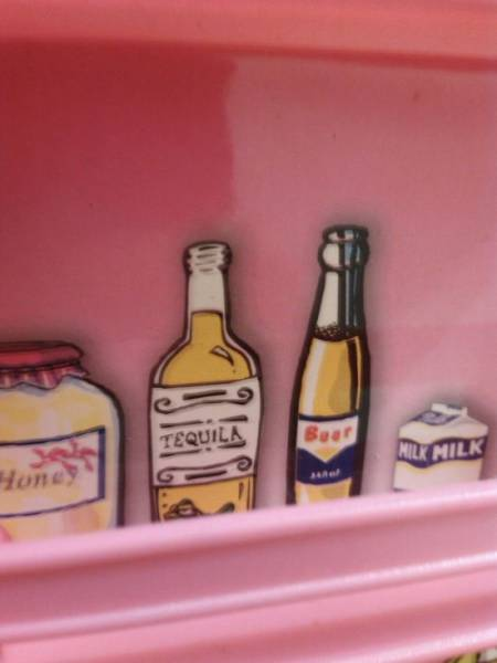 Was It Really That Necessary To Put Those In A Toy Refrigerator?!