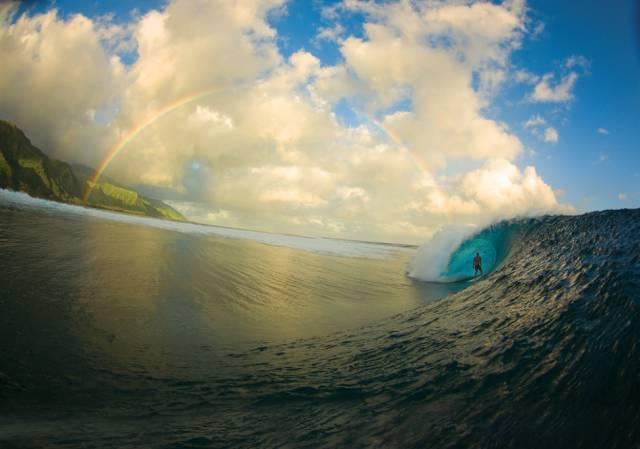 Dive Into Pure Visual Perfection