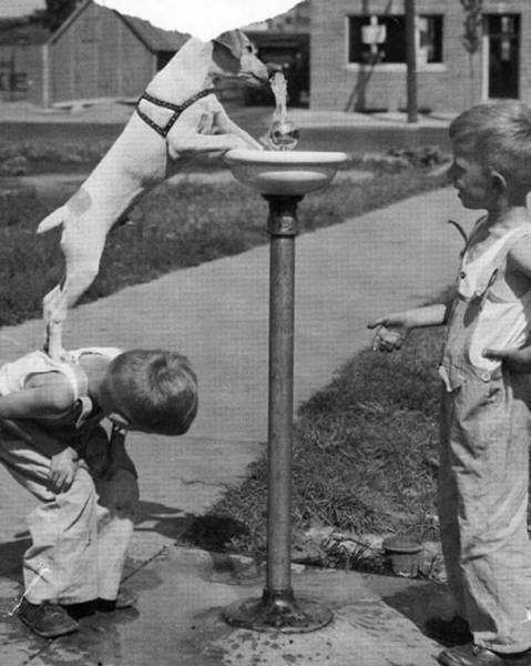 Children Actually Had Some Amazing Time Before Smartphones And Computers Were Even Invented