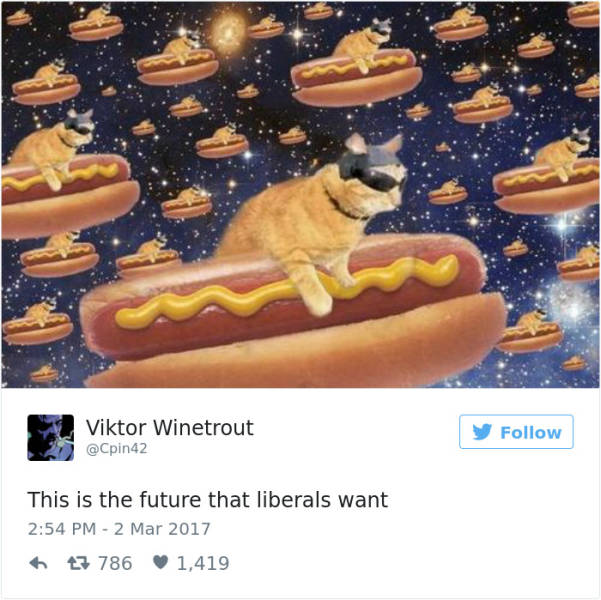 New Twitter Meme Shows That Liberals Want A Quite Unconventional Future…