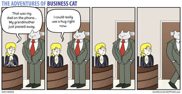 Everyone Needs A Cat Boss Sometimes…