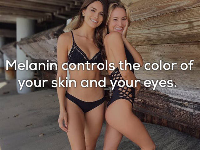 Is Everything Of This Really About Our Skin?!