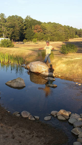 If You Like Ponds – Why Not Make Yourself One