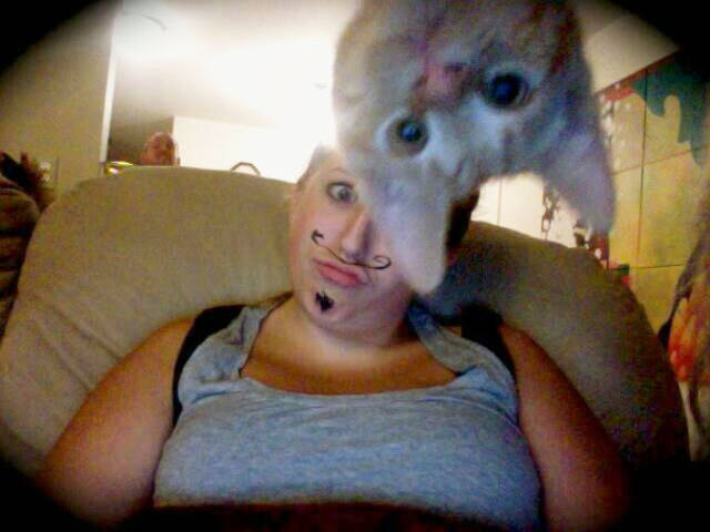 These Kitties Think Photobombs Need To Be Renamed Into Photocats