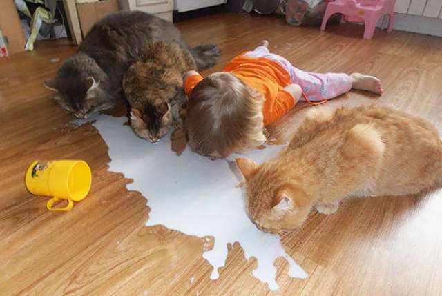 Kids Are The Worst Babysitters For Pets