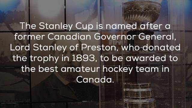 Well, Of Course You Need Some Hockey Facts!