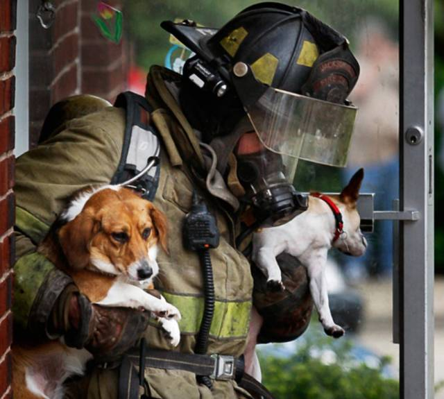 Firefighters Know That Each And Every Life Matters!