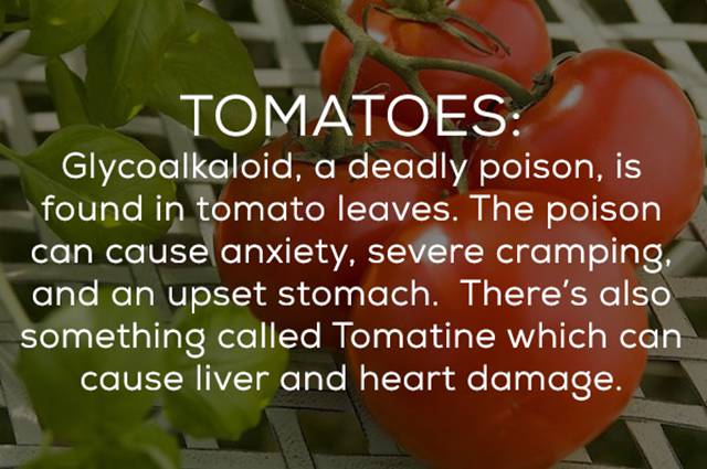 There's A Whole Bunch Of Ways Your Food Can Kill You