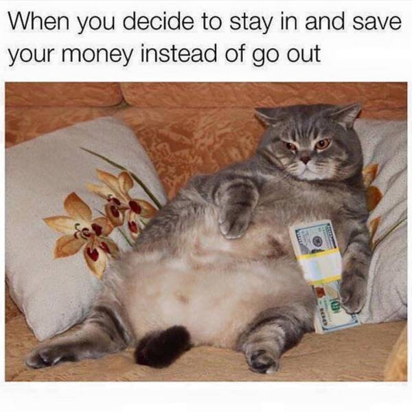 These Memes Reveal The Nature Of Those People Who Are Secretly Lazy And Introverted Bums