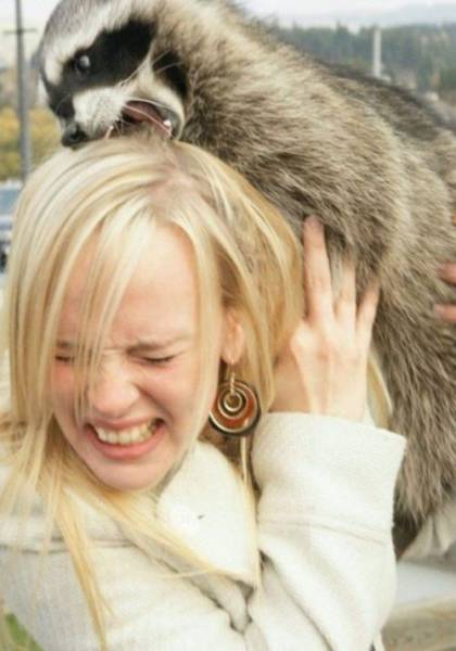 Animals Clearly Have Something Against Human Females