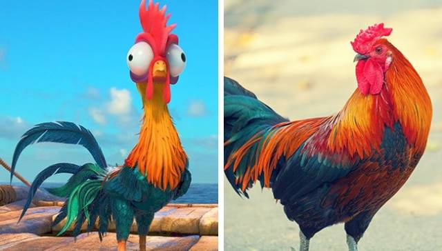 Even Animals From Cartoons Have Their Real-Life Prototypes!