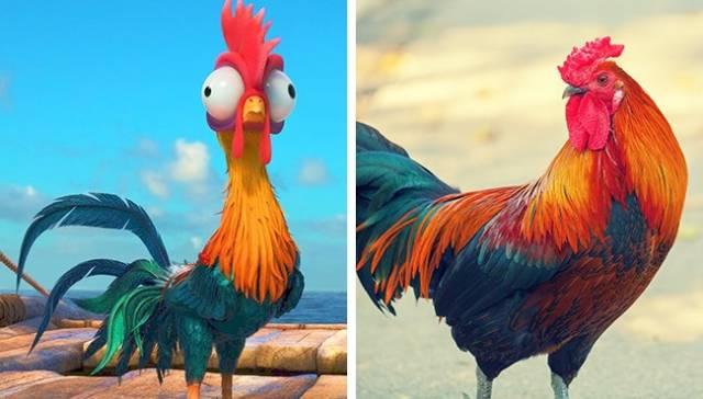 Animales animados tienen sus prototipos de la vida real