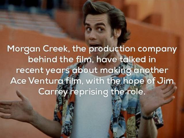 "Yay, Here Are The ""Ace Ventura"" Facts!"