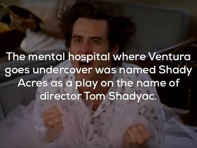 """Yay, Here Are The """"Ace Ventura"""" Facts!"""