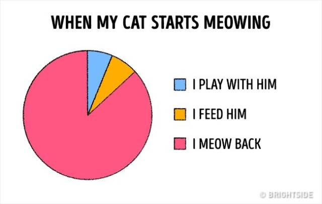 There Is No Way More Accurate To Illustrate Our Lives Than These Graphs
