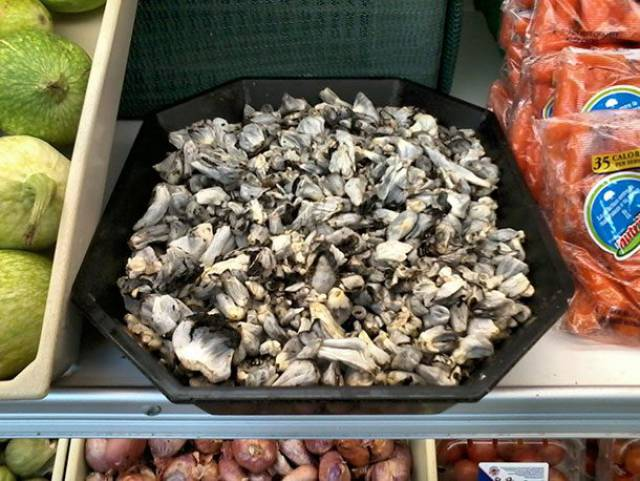 Some Of The World's Foods Are Downright Crazy!