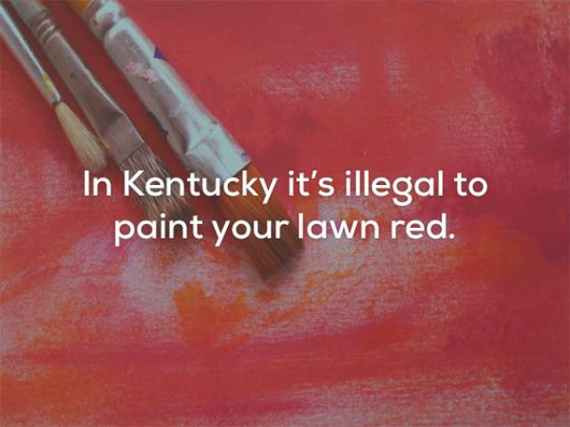 These Hilarious Laws Are Actually In Force In These US States!