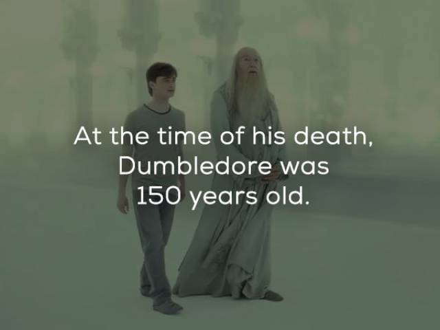 "Magical Facts About ""Harry Potter"" Is What We Need To Celebrate His 20th Birthday!"