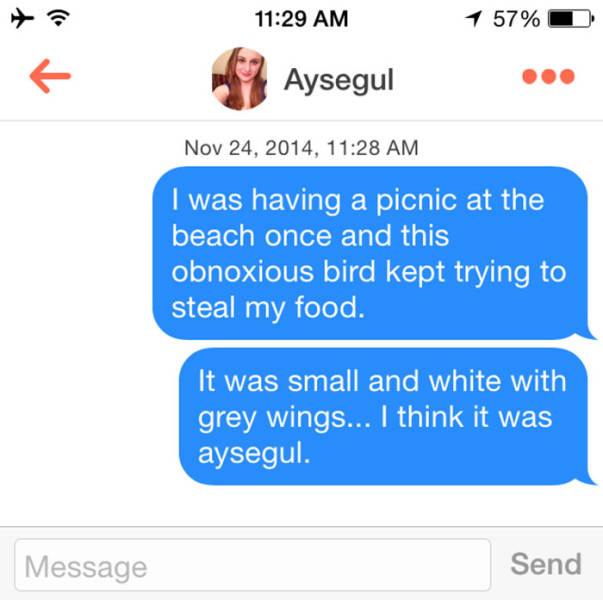Tinder Is The Goldmine Of Worst Pickup Puns You Will Ever Sea Or Here
