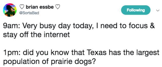 Internet Addiction? No, Internet Life!