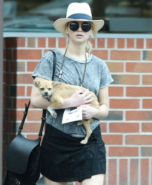 Jennifer Lawrence's Overreaction To A Paparazzi Trying To Pet Her Dog Has Divided The Internet