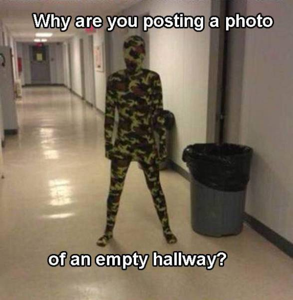 There's So Much Camouflage In These Memes, You Just Can't See Them!