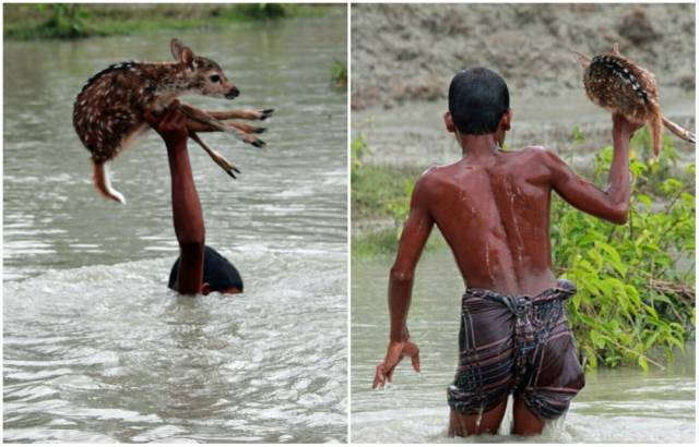Powerful Pictures That Will Make Your Day