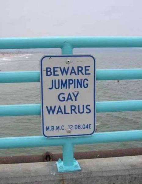 Don't Try To Understand These Signs – Just Enjoy Them