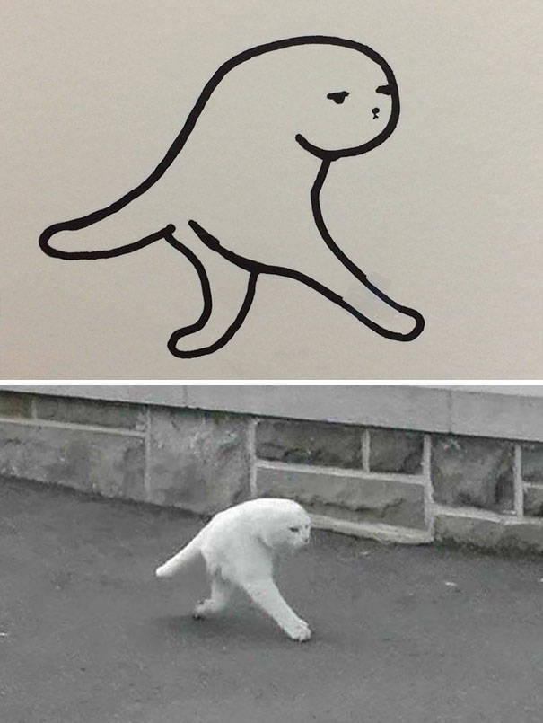 Although It's Hard To Spot At A Glance, These Cat Drawings Are Actually Pretty Accurate!
