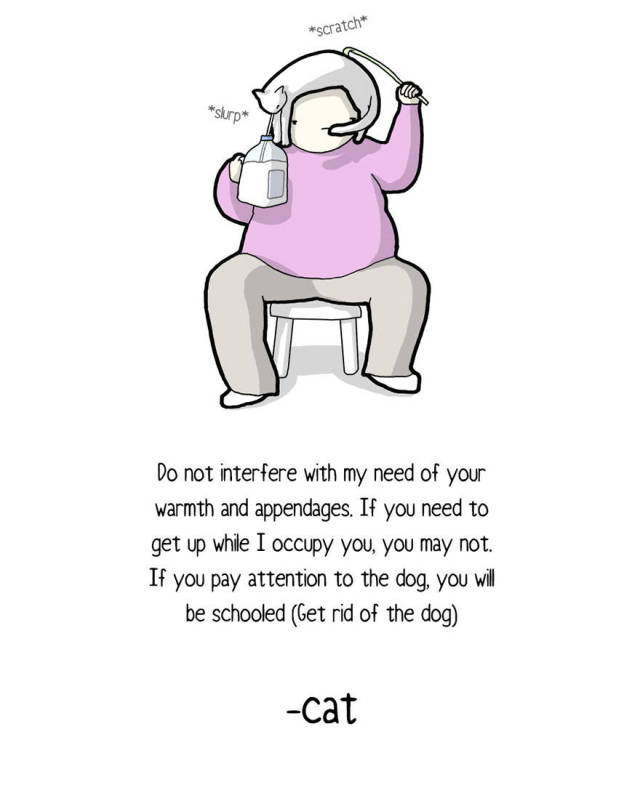 Cats Can Write Letters, And Here's One