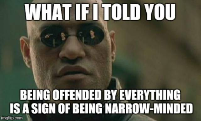 Everyone's Feelings Have To Be Defended Nowadays…