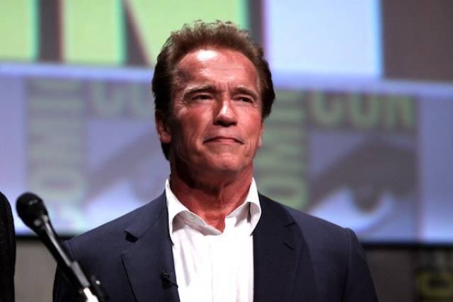20 Educating Facts About Arnie