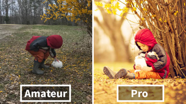 Amateur Vs. Pro: Good Photos Don