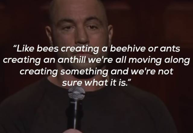 Get Some Wisdom From Joe Rogan
