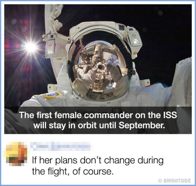 17 Comments That Are Better Than The Original Posts