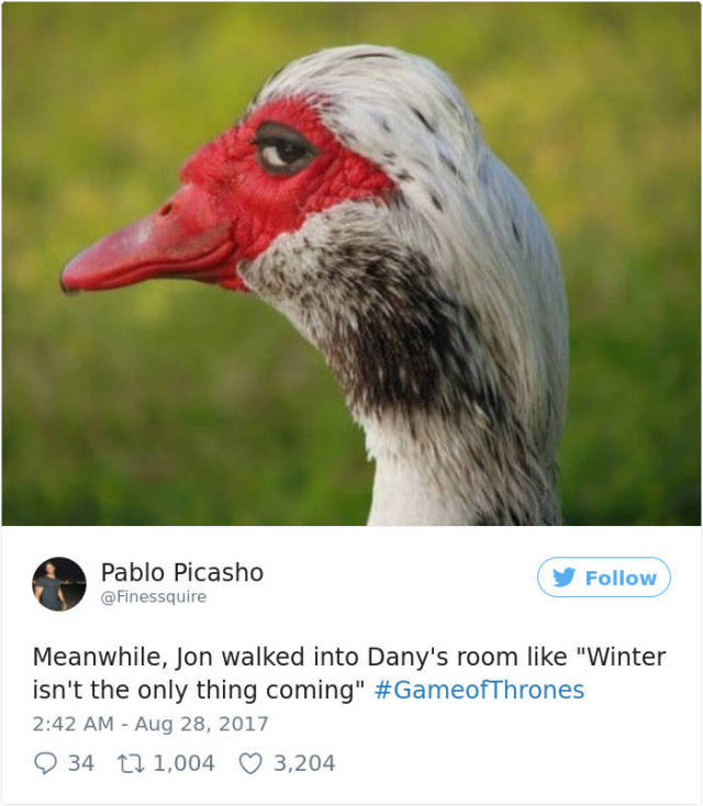 "People Will Never Get Tired Of Memeing About ""Game Of Thrones"" Season 7 Finale"