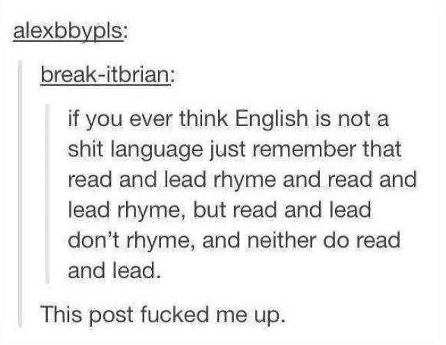 Tumblr Just Has All The Humor You Need