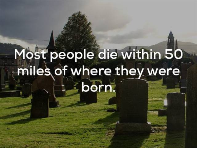 Facts That Are Fairly Unsettling