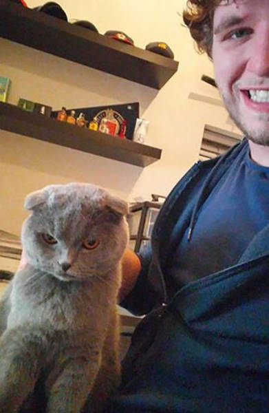 Cats Simply Hate Those Pathetic Selfies