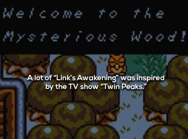 """Here's Your Link To """"Legend Of Zelda"""" Facts"""