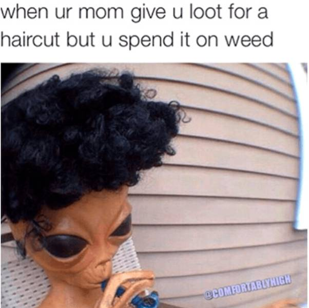These Weed Memes Are High As F#ck
