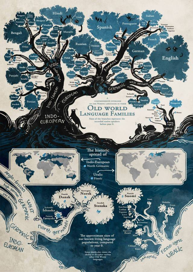 Connections Between Different Languages Could Be Displayed With A Simple Infographic!
