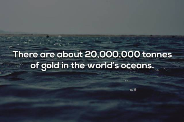 The Vast Ocean Of Nautical Facts