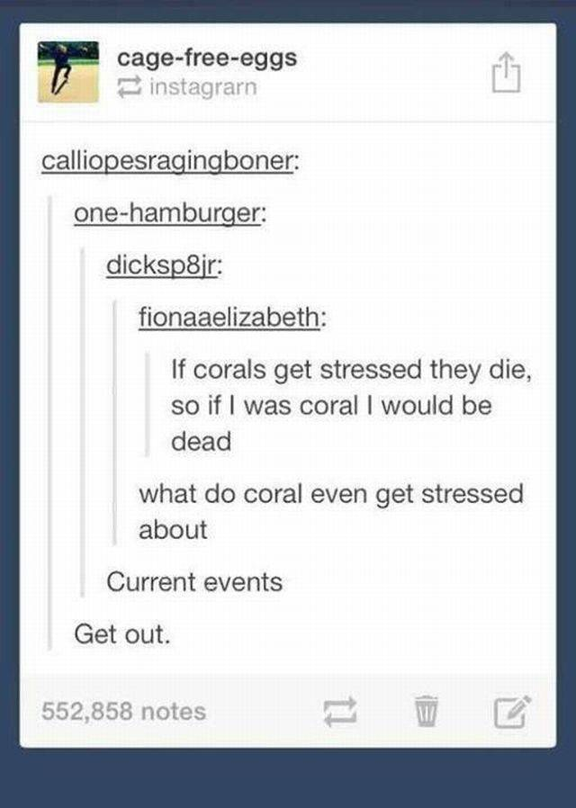 Tumblr Never Disappoints Us When It Comes To Humor