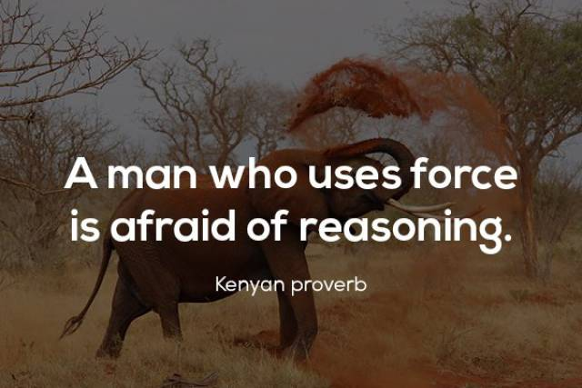 Proverbs Have All The Humanity's Wisdom In Them